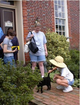 Anne, Heather, and Kelly petting a cat