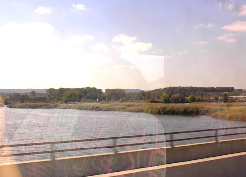 A shot of the Hudson River Marshland from the tour bus